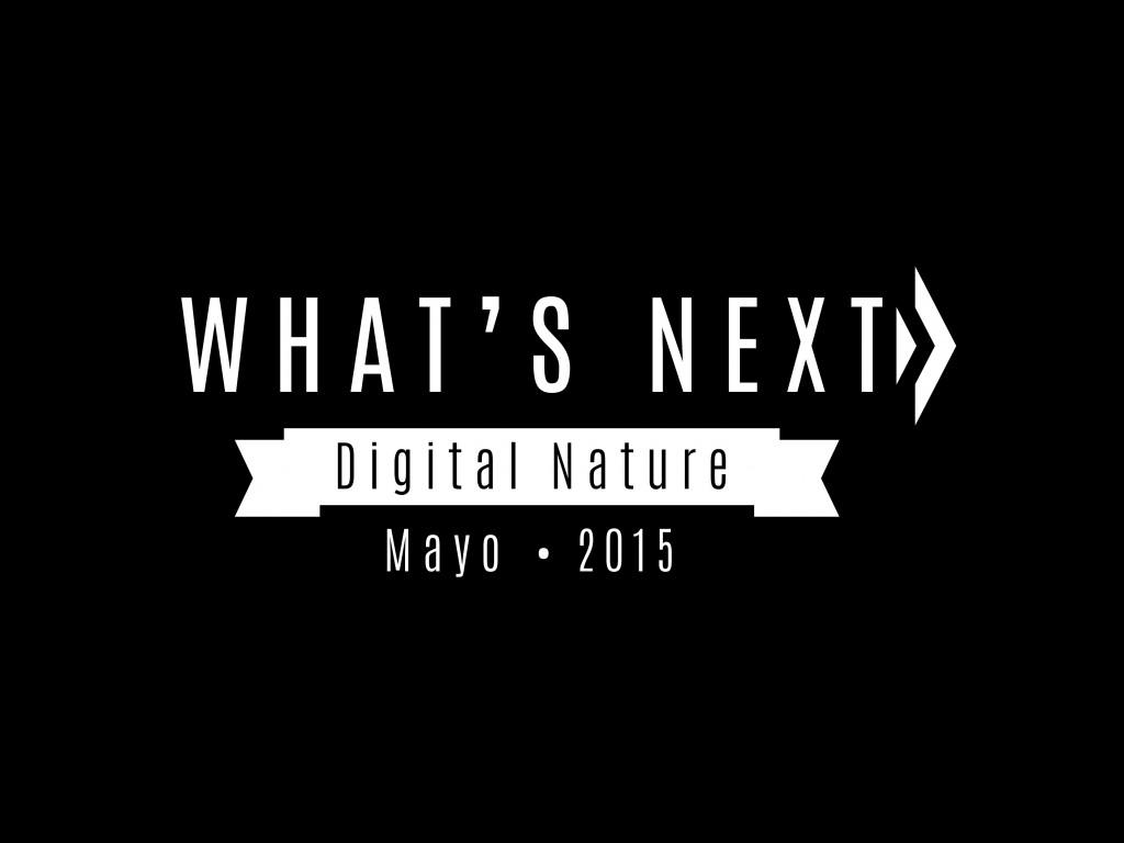 Logo Whats next 2015